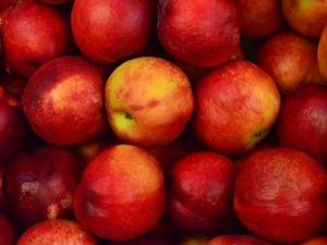 Яблоки и 120 комнат: креативные методики для поиска решений