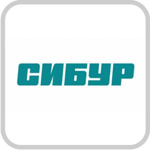 "ПАО ""СИБУР Холдинг"""